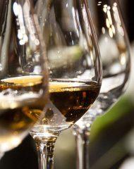 Dégustation de vins modifiés