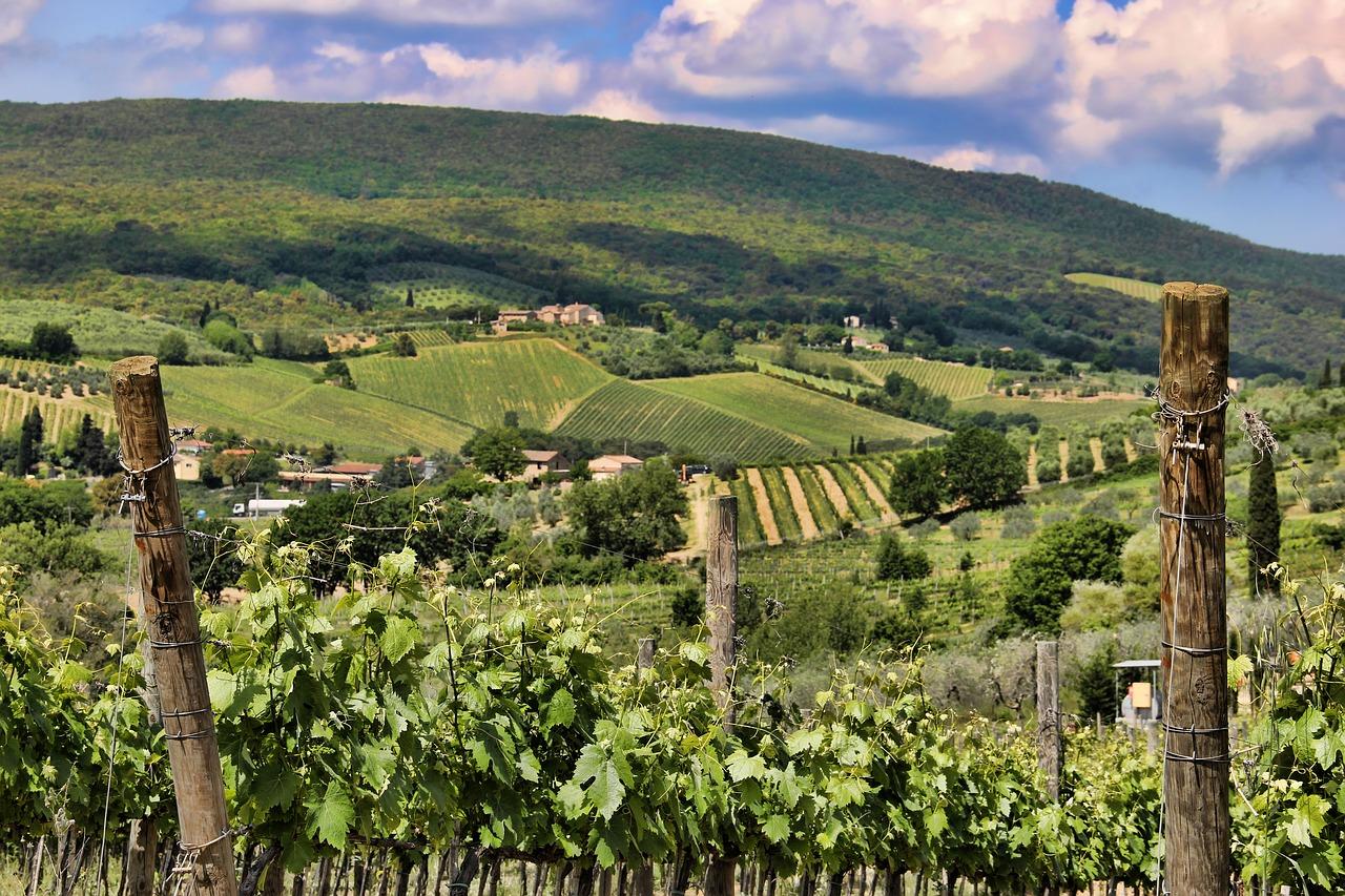 Classe de maitre sur les vins de Toscane