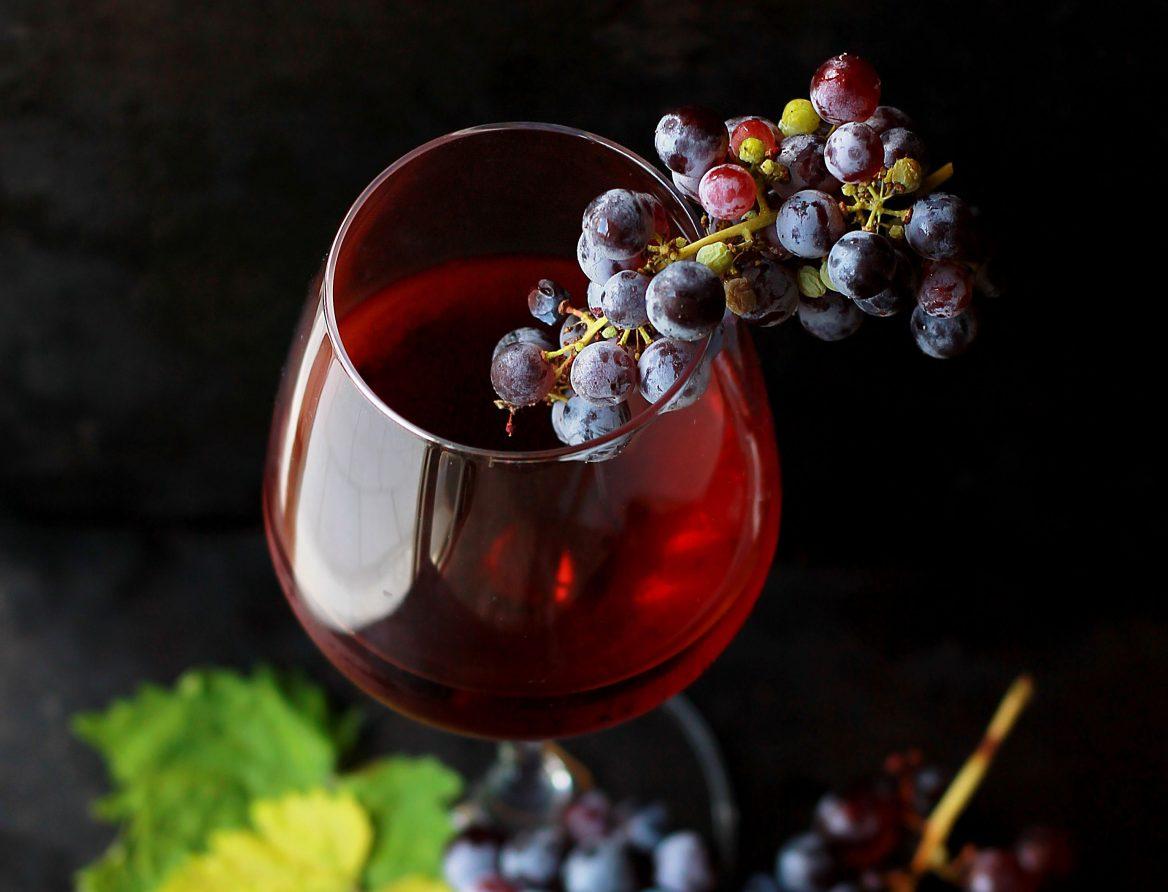 Le goût du vin et la science, conférence avec Fabrizio Bucella
