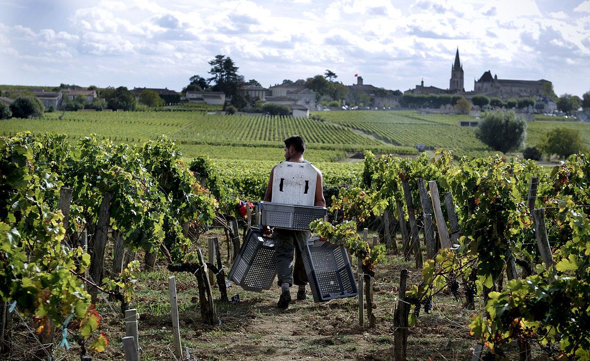 La viticulture en Belgique aujourd'hui, discours de clôture par Fabrizio Bucella