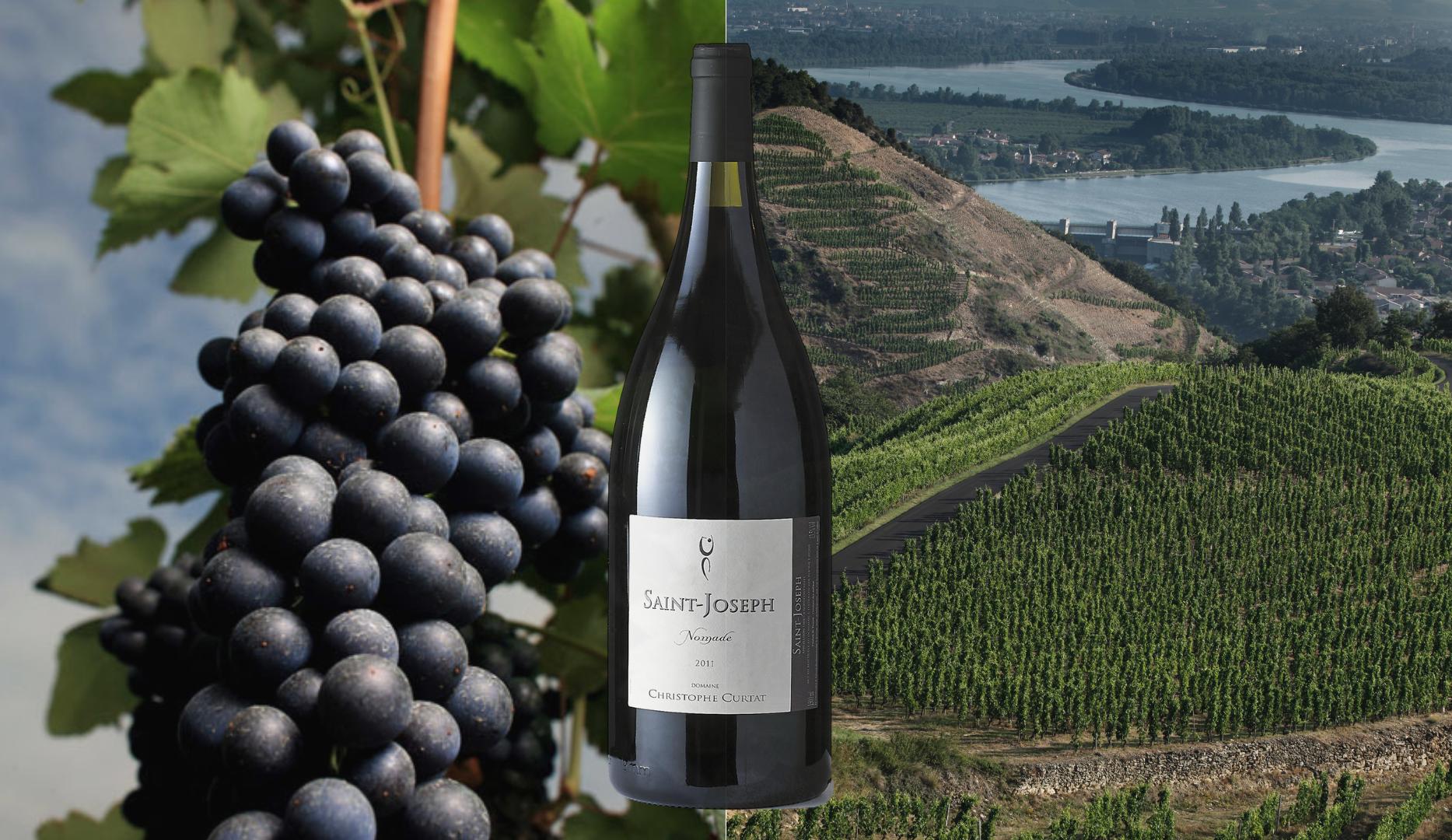Les vins de Saint-Joseph présentés par Fabrizio Bucella lors d'une Classe de maître IWD