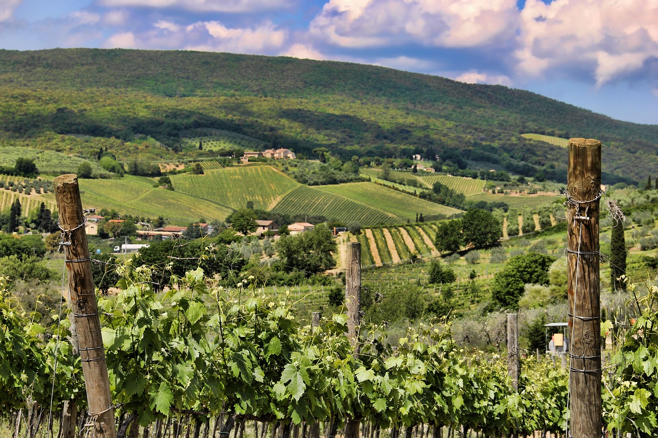 Classe de maître IWD sur les vins bios de Toscane